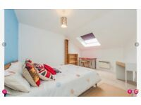 Large Double Bedroom in Friendly House Share for Non Smoking Professional