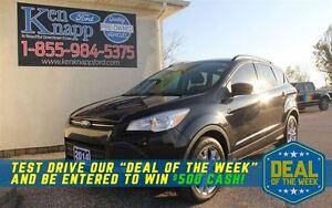 2014 Ford Escape SE Windsor Region Ontario image 1
