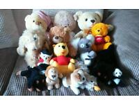 Lovely bag of cuddly toys in great condition