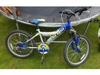 Boys mountain bikes