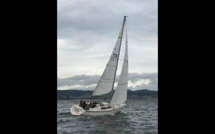 Cole 30 Yacht