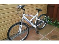 Bike adult white good condition