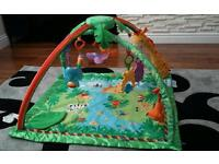 Fisher Price Rainforest Baby Gym playmat.