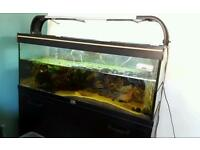 Fish tank and fish tank equipment