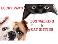 Dog Walker Cat Sitter Clapham and surrounding areas