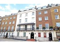 ONE DOUBLE BEDROOM FLAT- WOODEN FLOORS- GROUND FLOOR- BRIGHT RECEPTION ROOM- CLOSE TO TUBE