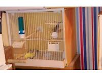 Finch,canary,budgie breeding cages