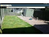 3 bedroom semi detached bcc house in south yardley birmingham b26