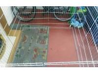 Large dogs playpen