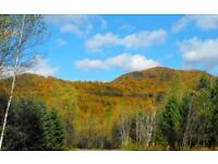 INVEST REAL ESTATE CANADA / LAND FOR SALE / 10HA & 15HA / SKI, GOLF, EQUITATION, BIKE, HIKE, NATURE