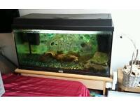 Jewel 100l fish tank with stand
