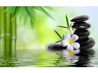 NEW luxury Thai massage