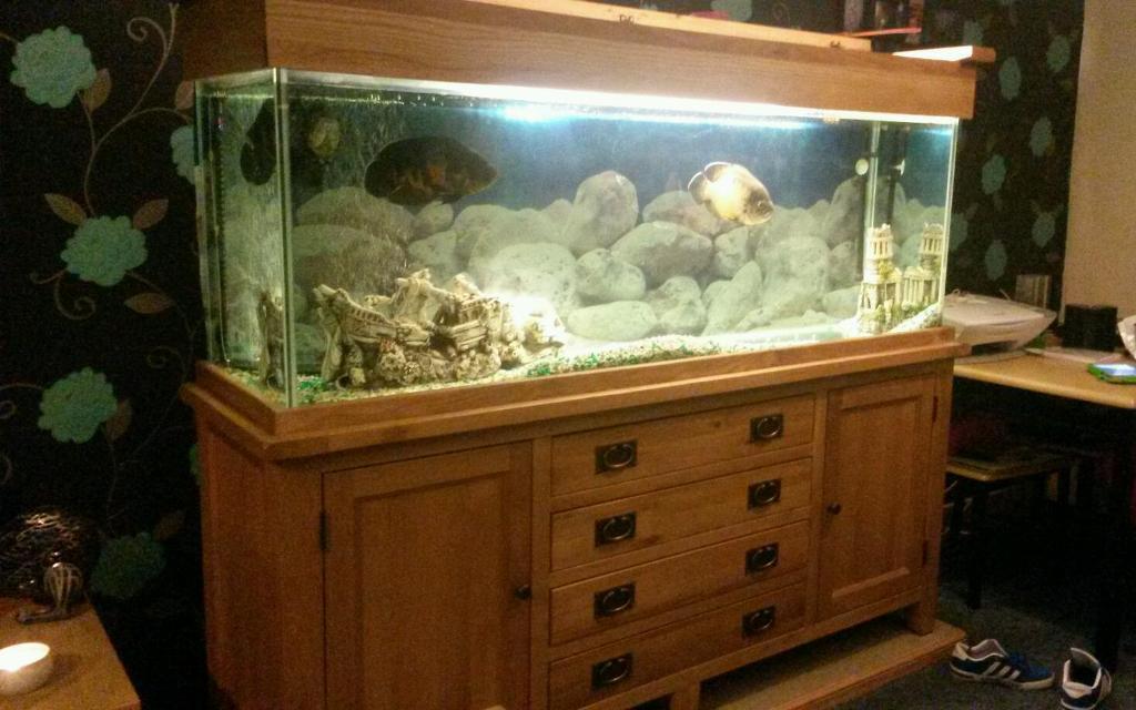 Aquarium for sale edinburgh solid oak fish tank for sale for Fish aquarium for sale