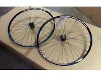 Stans Iron Cross on Hope Pro 2 Evo cyclocross wheelset