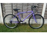 Mens Raleigh 21 speed mountain bike