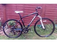 Superb Hybrid mountain bike