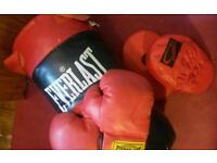 Boxing bag, gloves and jab pads