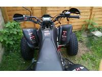 Bashan 250cc quad