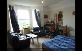Studio Flat for rent, St Leonard's, dss welcome, available from 3rd May.