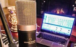 Marantz Professional MPM-1000 Large Studio Diaphragm Condenser Microphone Podcast Youtube or twitch