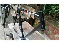 Single speed specific bicycle frame