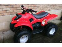 100cc Quad suitable for age 10 +