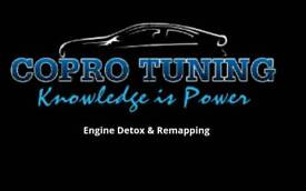 Engine carbon Clean and remapping