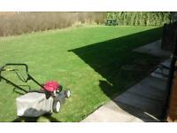 All gardening & fencing work undertaking. ( CHEAP RATES )