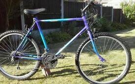 "Raleigh mountain bike, 26""wheels,"