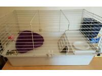 Cage for guinea pig with acessories and food