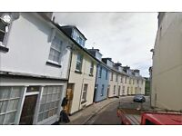 Refurbished 1 Bedroom Ground Floor Flat. Central Torquay. DG. Gas CH. Pets OK. Free WiFi (Ref MS1)