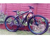 Stunning Specialized 29er