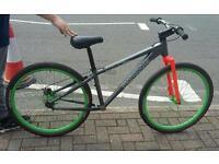 MONGOOSE Tyax jump bike -PROJECT!