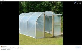( WANTED ) polytunnel