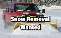 Snow Plowing / Removal Wanted