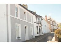 Boutique Apartment in St. Ives - with parking, garden and harbour views - sleeps 5