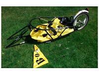 BOB Yak Cycle Trailer Incl. DrySak and all bits. VGC
