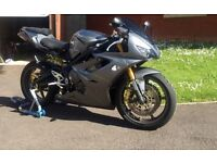 Daytona 675 (great condition)
