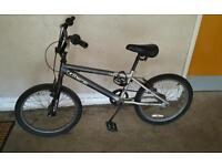 Bmw and Apolo bike