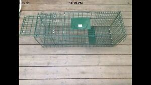 Animal cages for rent