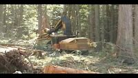 Buncher and Skidder operator