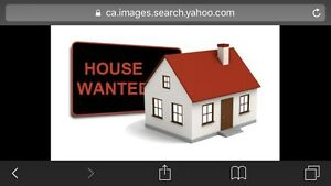 Have cash -need 1 to 1.5 level house in Chatham