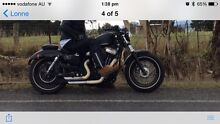 XL 1200 X (Forty-eight) FOR SALE Elizabeth Bay Inner Sydney Preview