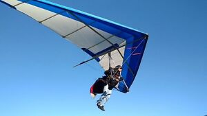 Hang Glider Wills Wing Falcon 170