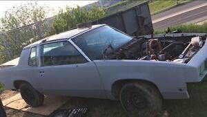 Cutlass 1981 t top