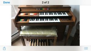 Electric organ and bench
