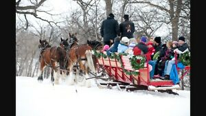Looking for wagon/sleigh for draft horses