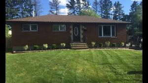 Beautifully updated 3+1 bedroom home in prime location