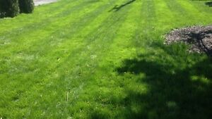 Landscaping &Lawncare jobs wanted
