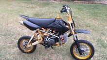 $$ I BUY BIKES CASH PAID!!! PIT BIKE THUMPSTER! LOOK $$$ Jimboomba Logan Area Preview
